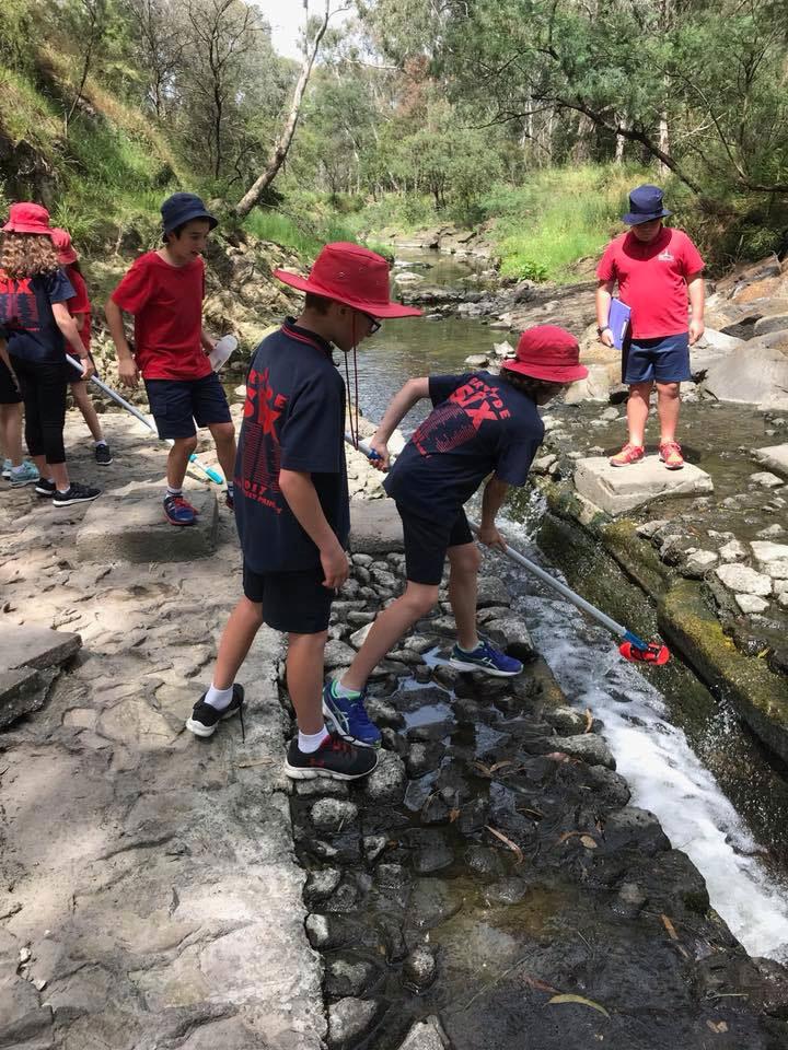 Excursion to Darebin Creek