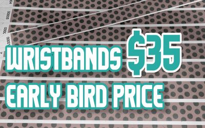 Early bird price for Wristbands